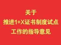 教育部办公厅 国家发展改革委办公厅 财政部办公厅关于推进1+X证书制度试点工作的指导意见