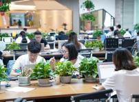 重庆新华2018年春季毕业生就业推荐工作圆满完成