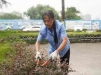 重庆新华总务处 致力为师生打造良好校园环境