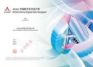 中国数字艺术设计师